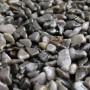 Kit complet 6m² - Tapis de pierre